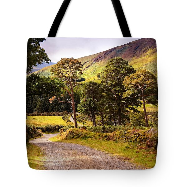 Celtic Spirit. Wicklow Mountains. Ireland Tote Bag by Jenny Rainbow