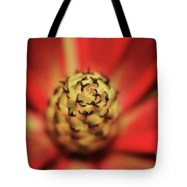 Centrifugal Tote Bag by Stephen Mitchell