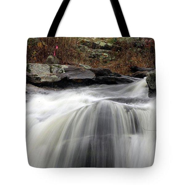 Chapman Falls 3 Tote Bag