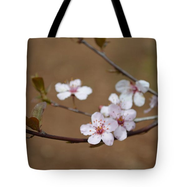 Tote Bag featuring the photograph Cherry Blossoms by Linda Geiger
