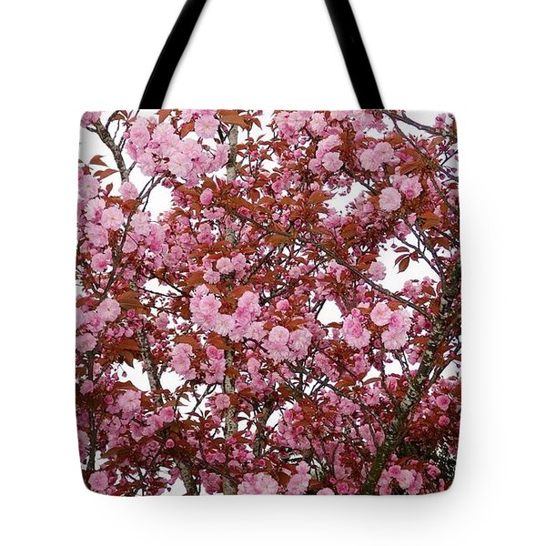 Tote Bag featuring the photograph Cherry Blossoms  by Victor K