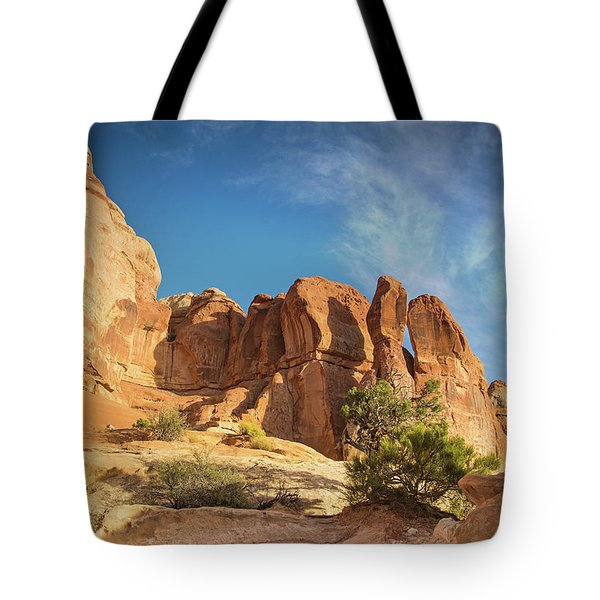 Chesler Sunset Tote Bag