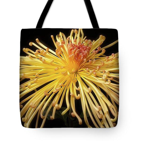Chrysanthemum 'lava' Tote Bag
