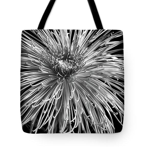 Chrysanthemum 'pink Splendor' Tote Bag