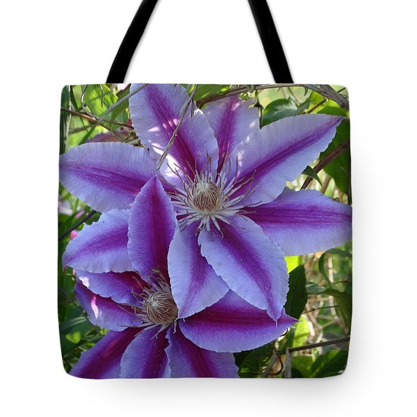 Clematis Petals Tote Bag by Rebecca Overton