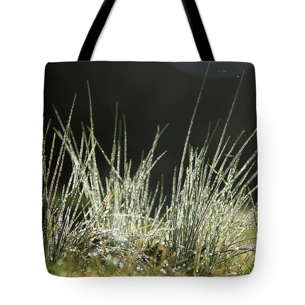 Close-up Of Dew On Grass, In A Sunny, Humid Autumn Morning Tote Bag
