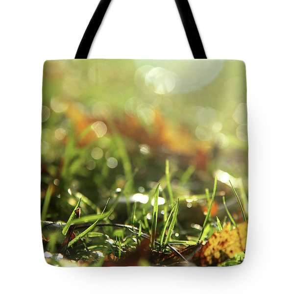 Close-up Of Dry Leaves On Grass, In A Sunny, Humid Autumn Morning Tote Bag