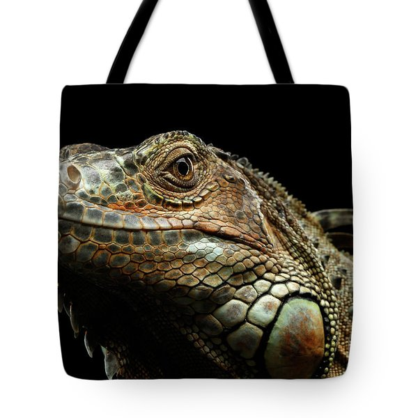 Closeup Green Iguana Isolated On Black Background Tote Bag by Sergey Taran