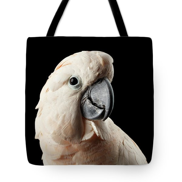 Closeup Head Of Beautiful Moluccan Cockatoo, Pink Salmon-crested Parrot Isolated On Black Background Tote Bag