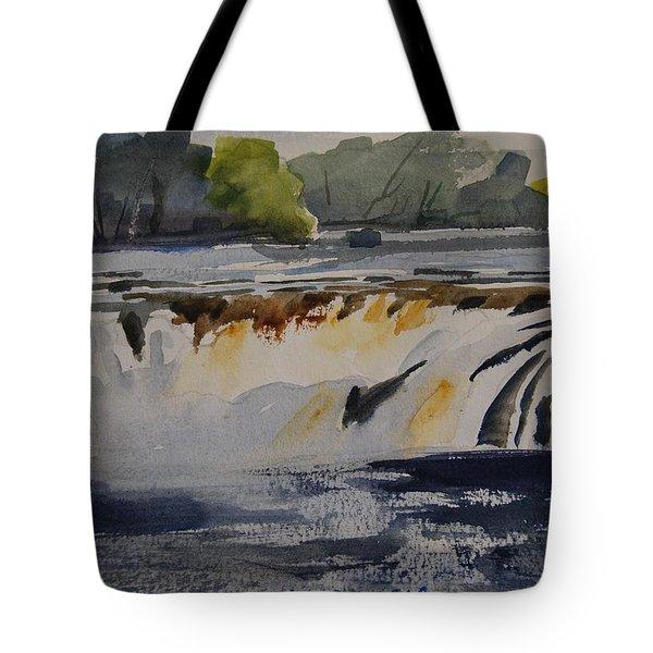 Cohoes Falls Study 2 Tote Bag