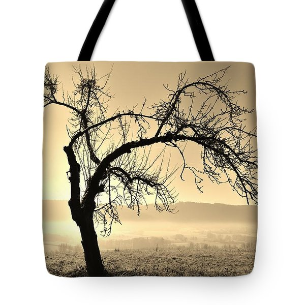 cold Winter day.... Tote Bag by Werner Lehmann