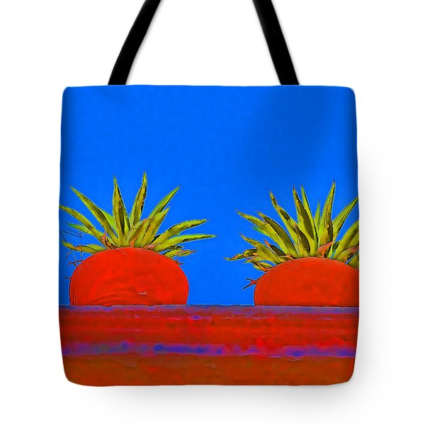 Colorful Potted Plants Mexico Tote Bag