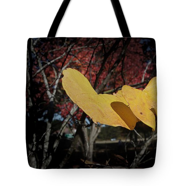 Colors Of Fall Tote Bag by Joseph G Holland
