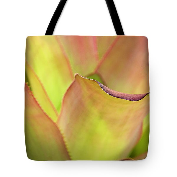 Tote Bag featuring the photograph Colors Of Nature by Julie Palencia