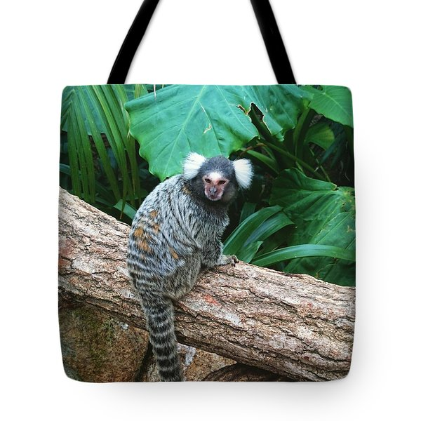Commonmarmoset  Tote Bag