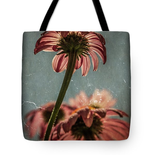 Coneflower Tote Bag by Garry McMichael