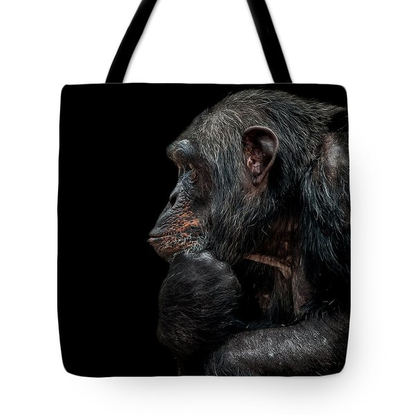Contemplation  Tote Bag by Paul Neville