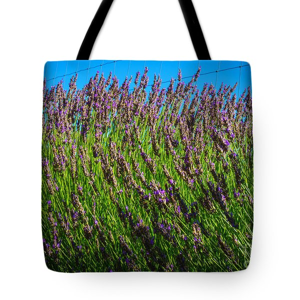 Country Lavender Iv Tote Bag