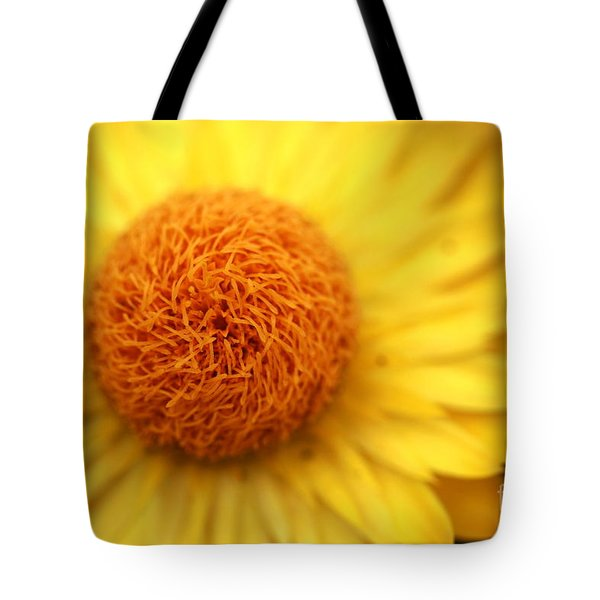 Crazy Spin Tote Bag by Stephen Mitchell