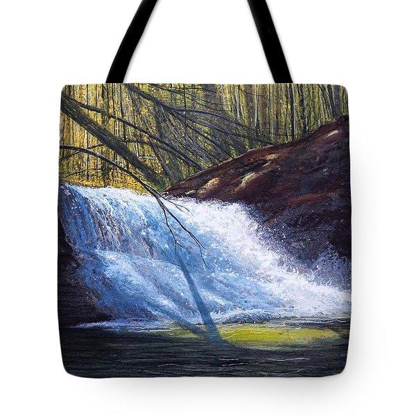Creation Falls Tote Bag