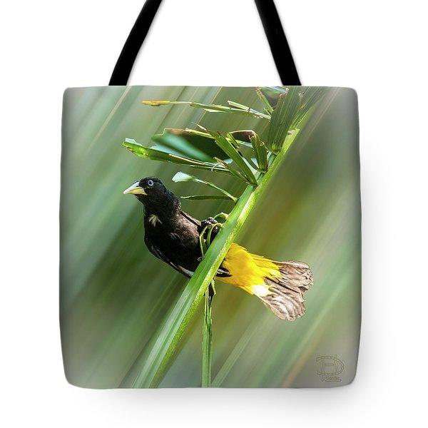 Crested Oropendola Tote Bag