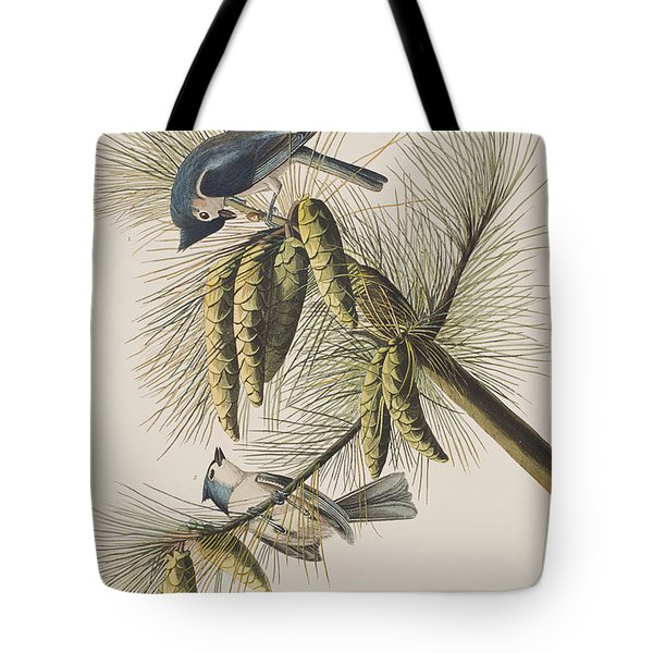 Crested Titmouse Tote Bag