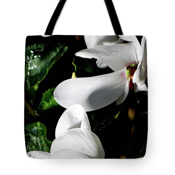Tote Bag featuring the photograph Cyclamen by Mindy Newman