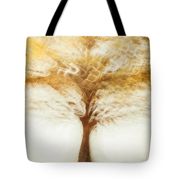 Cypress In Autumn Tote Bag