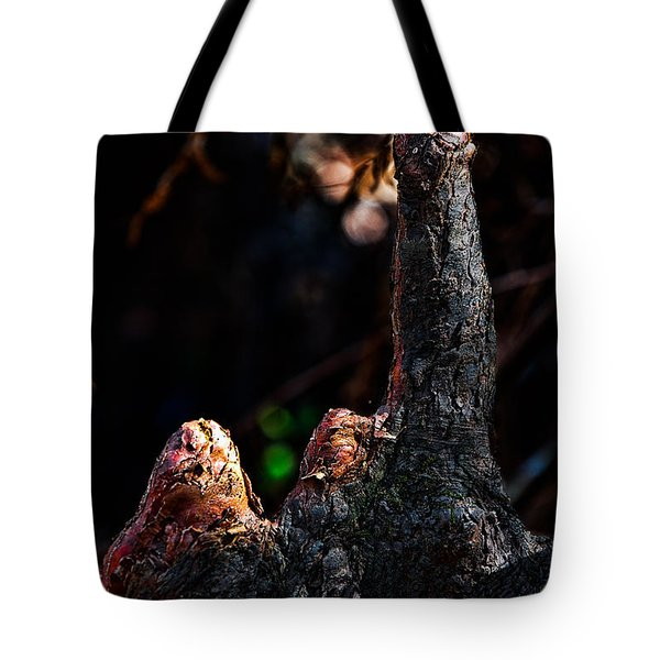 Cypress Knees Tote Bag by Christopher Holmes