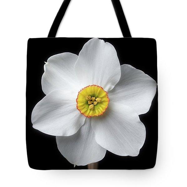 Daffodil 'cantabile' Tote Bag