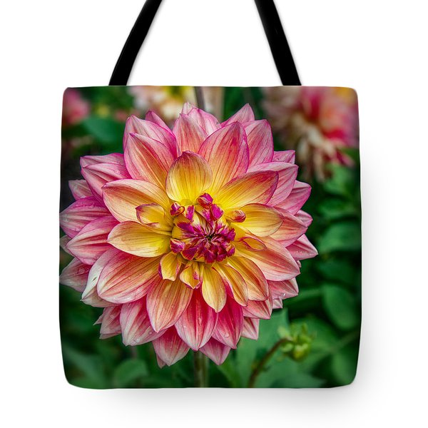 Tote Bag featuring the photograph Dahlia 20 by Phil Abrams