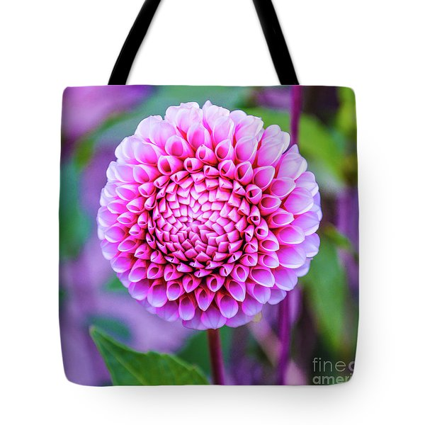 Tote Bag featuring the photograph Dahlia by Zaira Dzhaubaeva