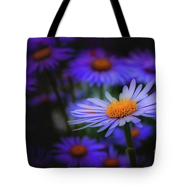 Daisy  Tote Bag by Jim  Hatch