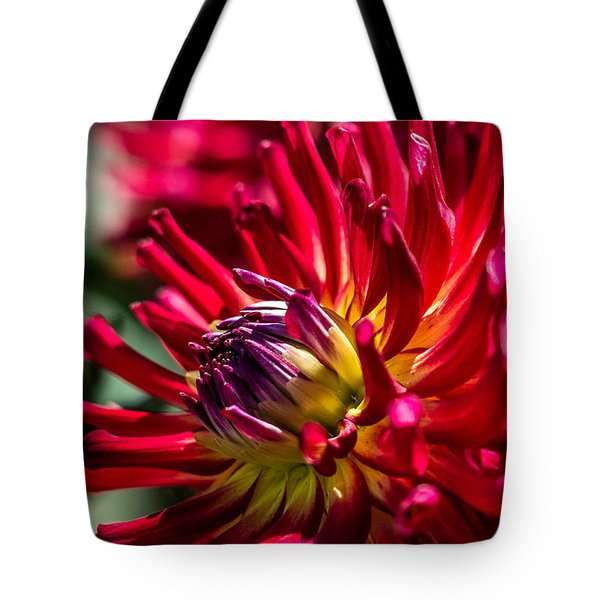Tote Bag featuring the photograph Dalhia by Randy Bayne
