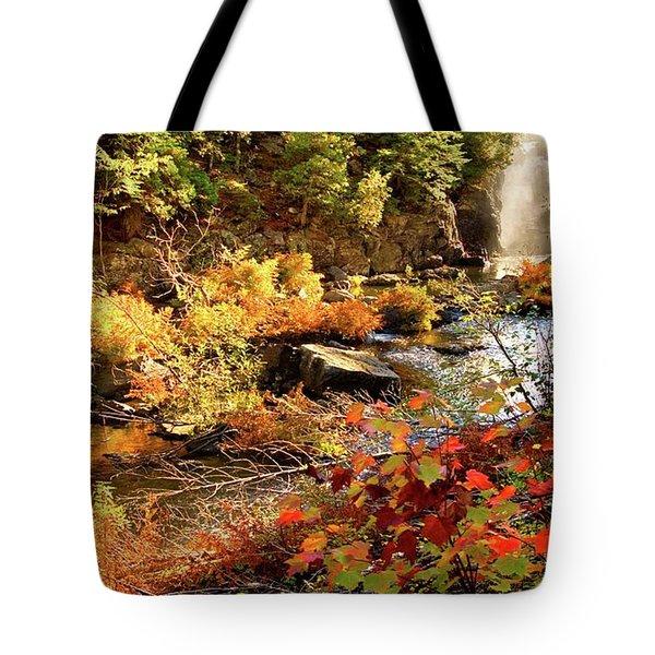 Dead River Falls  Marquette Michigan Tote Bag