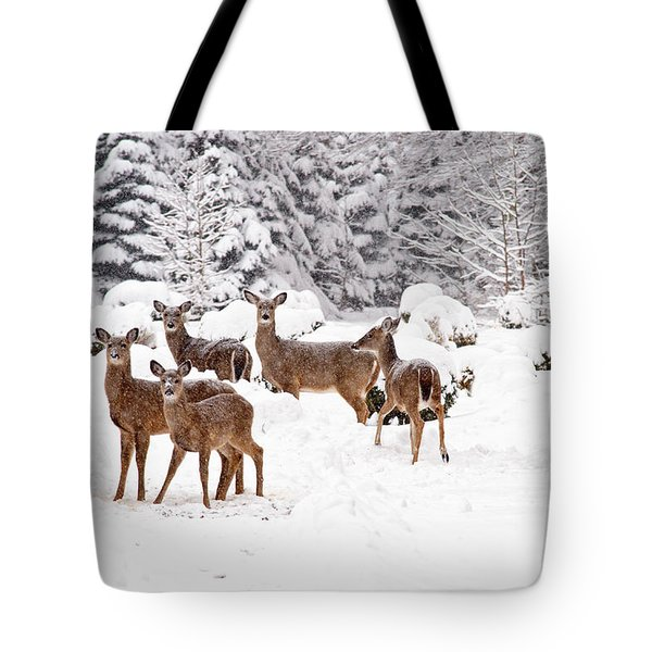 Tote Bag featuring the photograph Deer In The Snow by Angel Cher