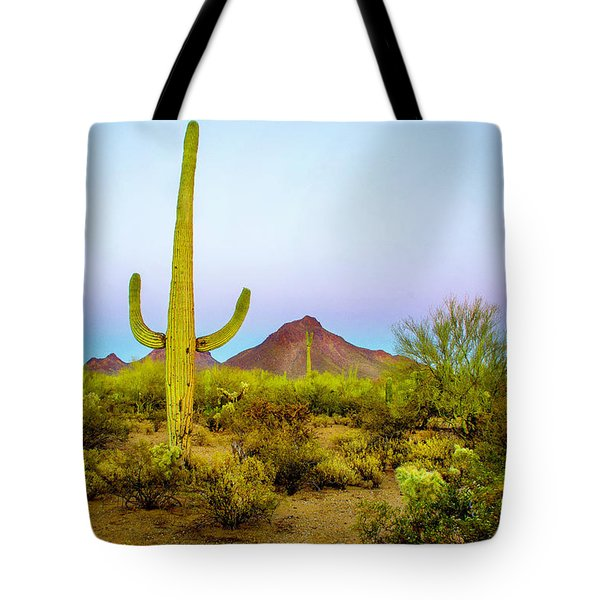 Tote Bag featuring the photograph Desert Beauty by Barbara Manis