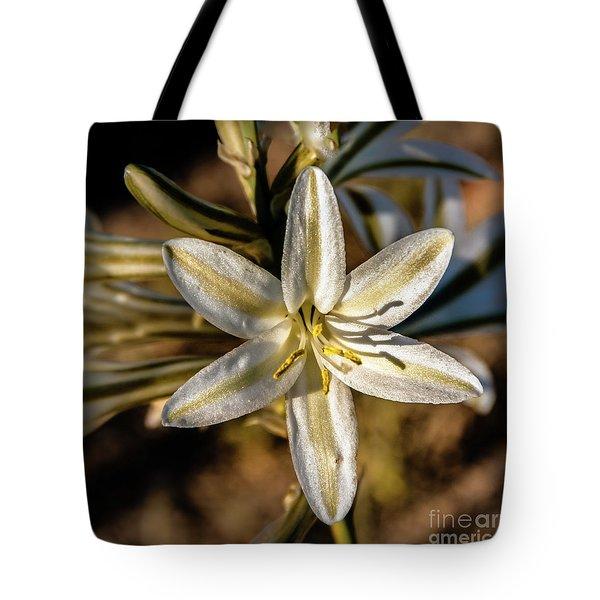 Desert Lily Tote Bag by Robert Bales
