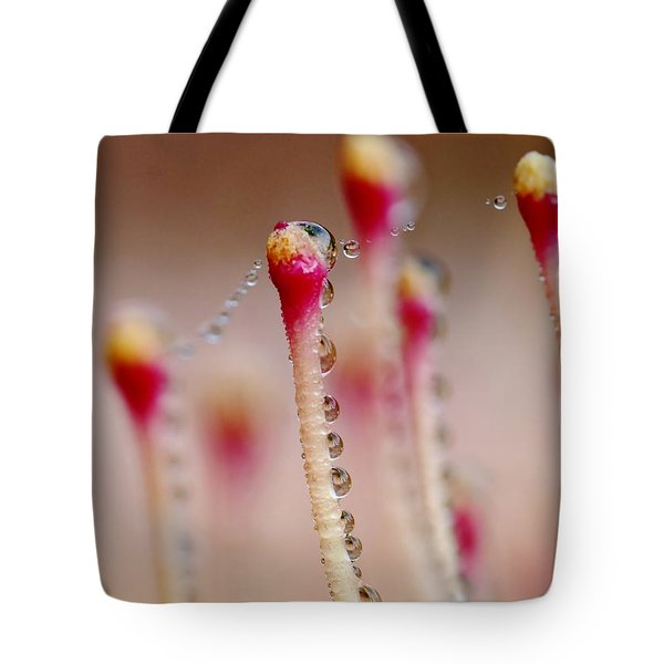 Dew Drops In A Row... Tote Bag