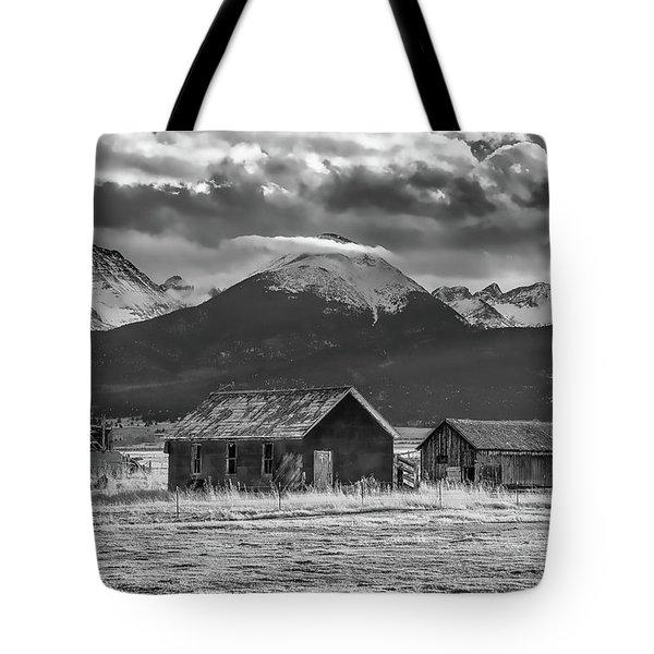 Dignity Tote Bag
