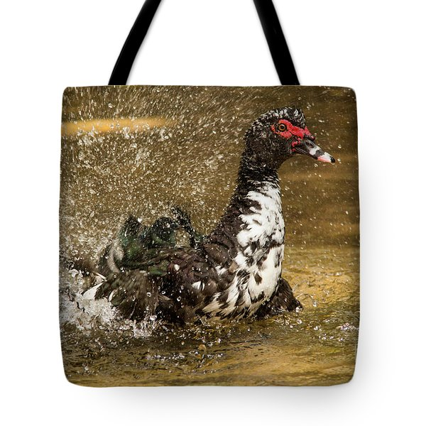 Does She See Me Yet? Wildlife Art By Kaylyn Franks Tote Bag