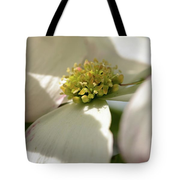Dogwood Jewels Tote Bag by Wanda Brandon