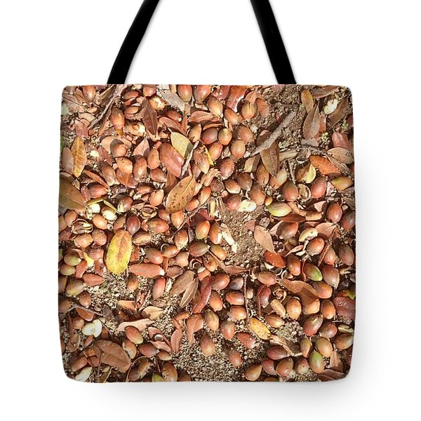 Donguri Means Acorn  Tote Bag