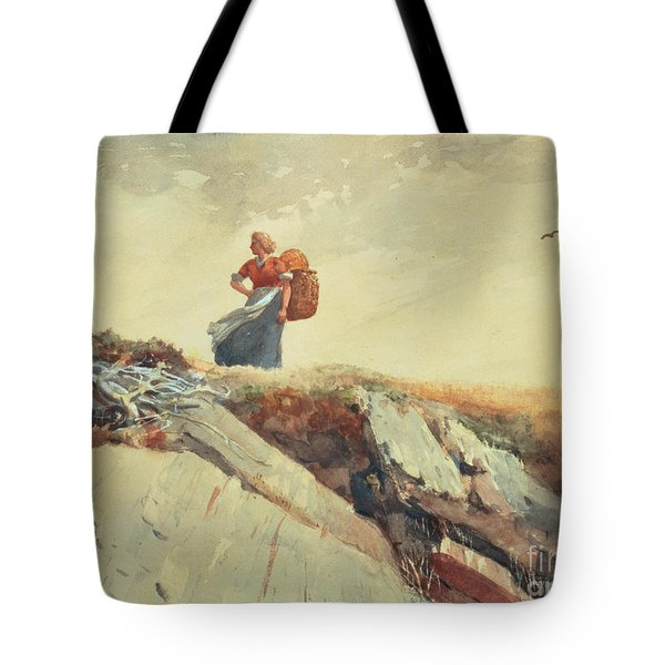 Down The Cliff Tote Bag by Winslow Homer
