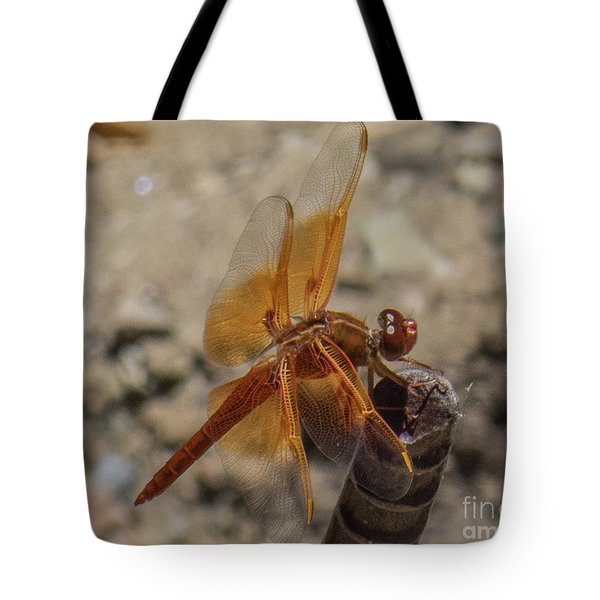 Dragonfly 18 Tote Bag