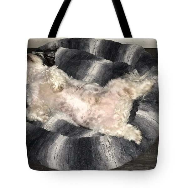 Dreamland Tote Bag by Val Oconnor