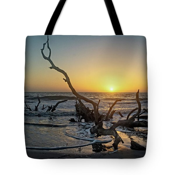 Driftwood Beach Tote Bag by Patricia Turo