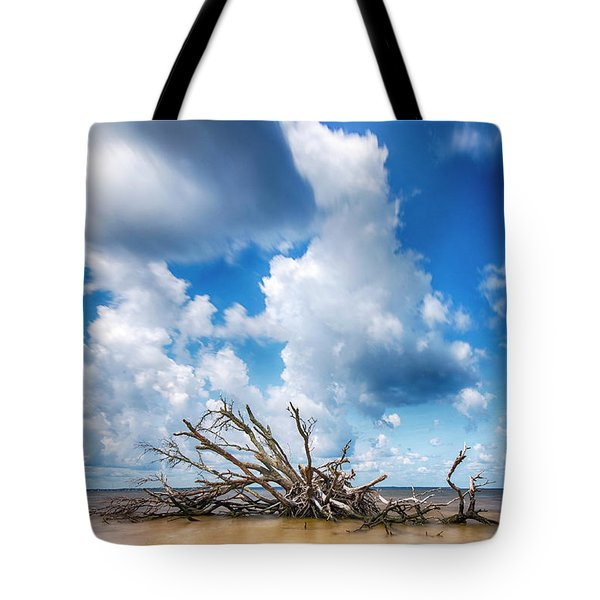 Tote Bag featuring the photograph Driftwood Sky by Alan Raasch