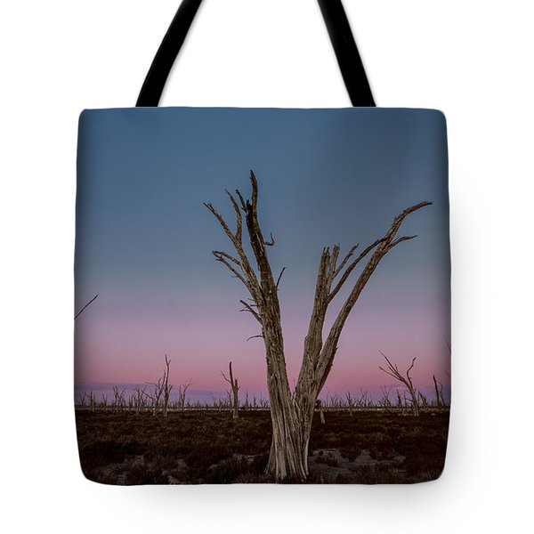 Tote Bag featuring the photograph Dusk At Dumbleyung Lake by Julian Cook