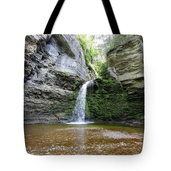 Eagle Cliff Falls In Ny Tote Bag